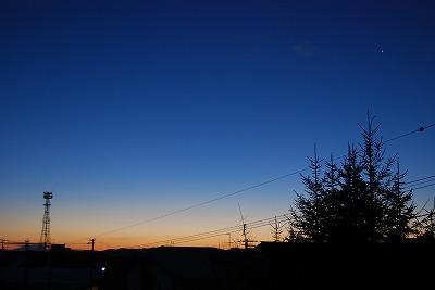 DSC_1217_20121125231903.jpg