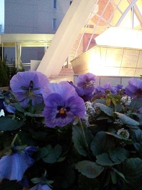 21チャペル前の花