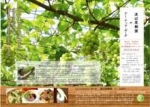 渡辺果樹園イタリアン2012091212