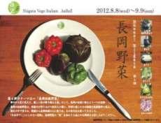 長岡野菜イタリアンチラシ表面yoko212
