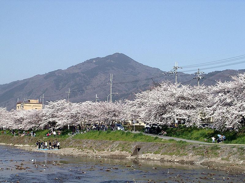 比叡山と桜(京都市左京区から)
