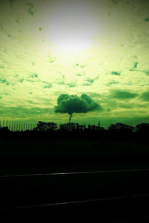 1月のきのこ雲 2