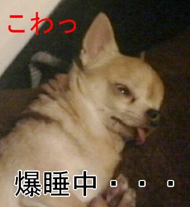 2012052400290000.jpg