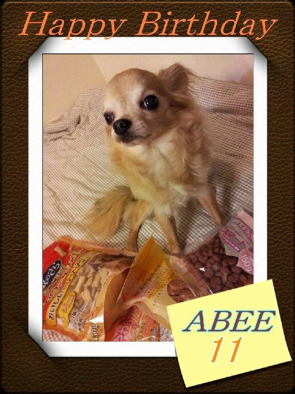 abee11-2.jpg