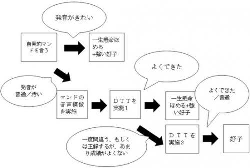 DTTの分化強化
