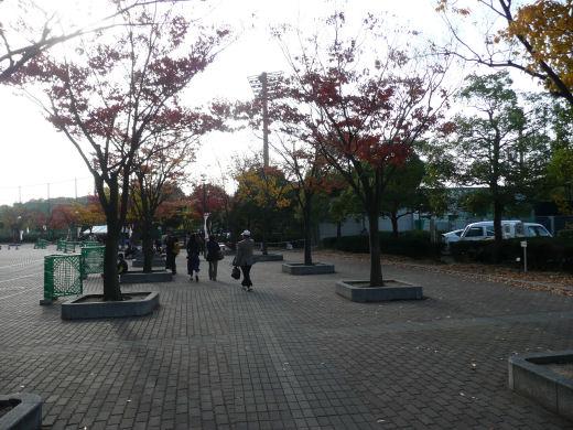 kurashikicitykurashikisportspark121112-7.jpg