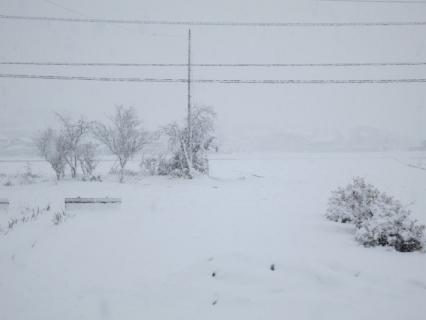 THE 雪景色