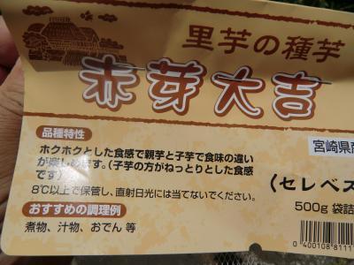 ジャガイモ畑①