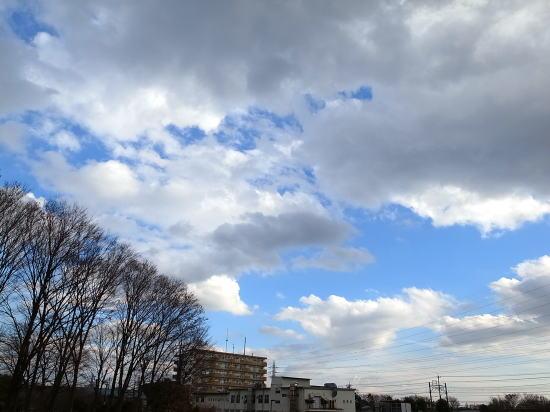 20121231_1.jpg