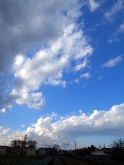 20121231_3.jpg