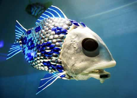 316robot-fish