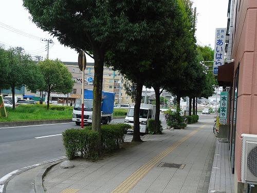 1205suzuki001.jpg