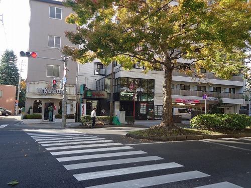 1211yokozuna001.jpg