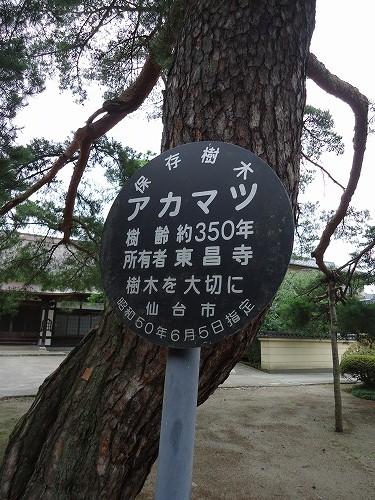 1308kitayama006.jpg