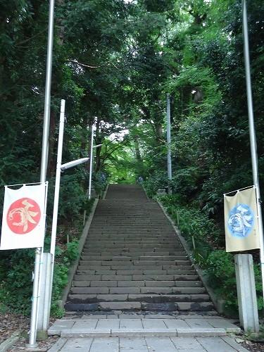 1308kitayama011.jpg