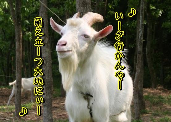 Baidu IME_2012-12-3_10-25-14