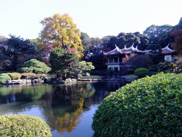 新宿御苑④