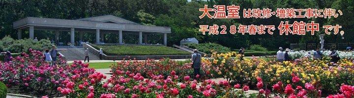 神代植物公園 (2)