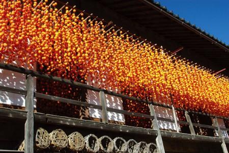 南信州の象徴-柿暖簾