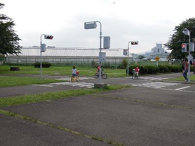 秦野交通公園 (1)