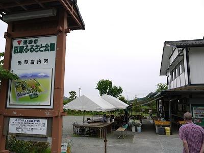 田原ふるさと公園 (5)