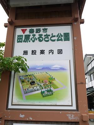 田原ふるさと公園 (4)