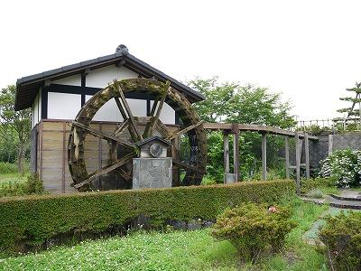 田原ふるさと公園 (12)