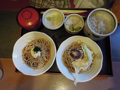 橋本 (1)