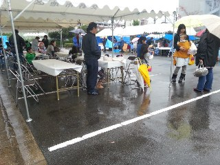 20121111_134634.jpg