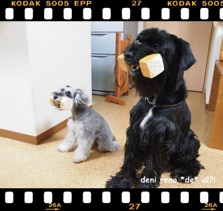 マヌケちっく(笑)