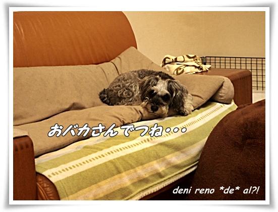 1006_f.jpg