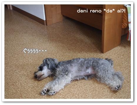 お昼寝レノちゃん