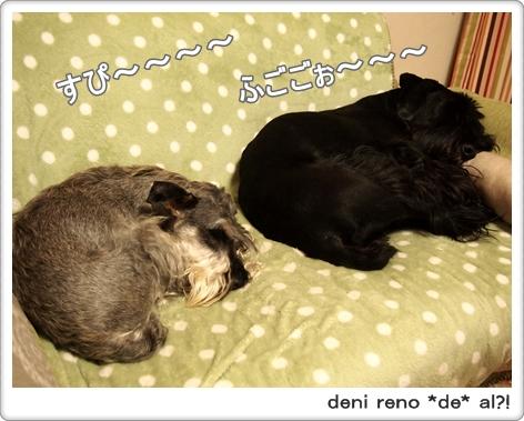 デニ吉&アル坊