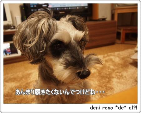 レノちゃんには不要でつっ!