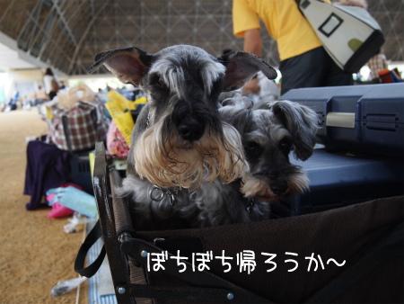 1_20120529220402.jpg