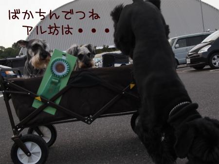3_20120529220400.jpg