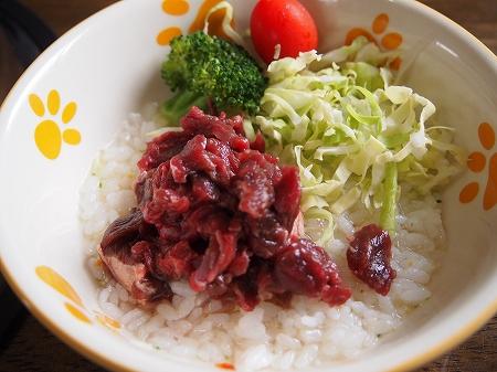 レノちゃんご飯