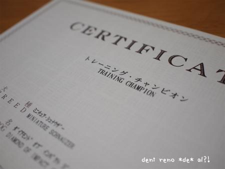 reno_2_20120607223335.jpg