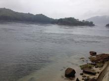 20140607 川の様です激流でっす
