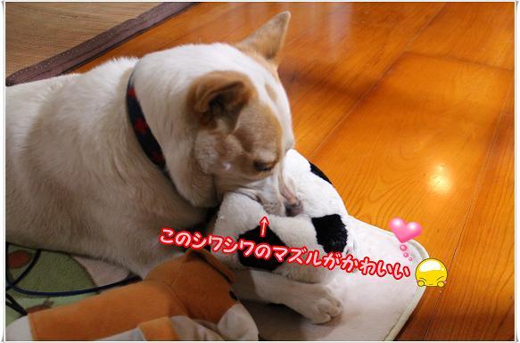 018mottokawaii.jpg