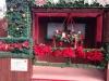 しゅうクリスマス