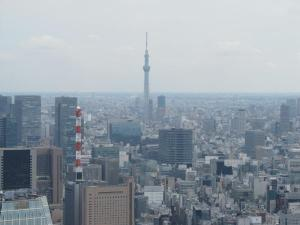 東京タワーから見たスカイツリー