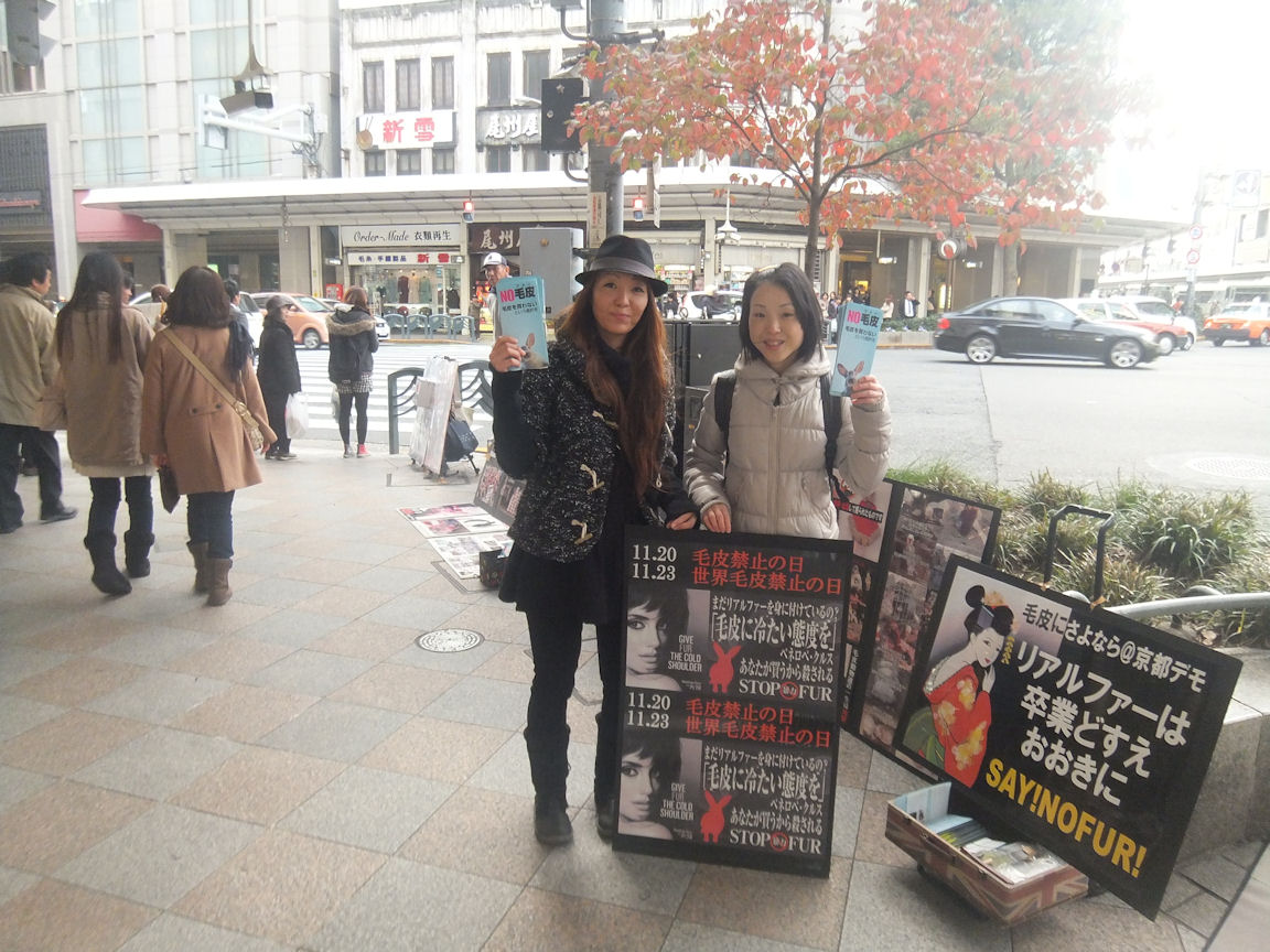 10_20121120212641.jpg