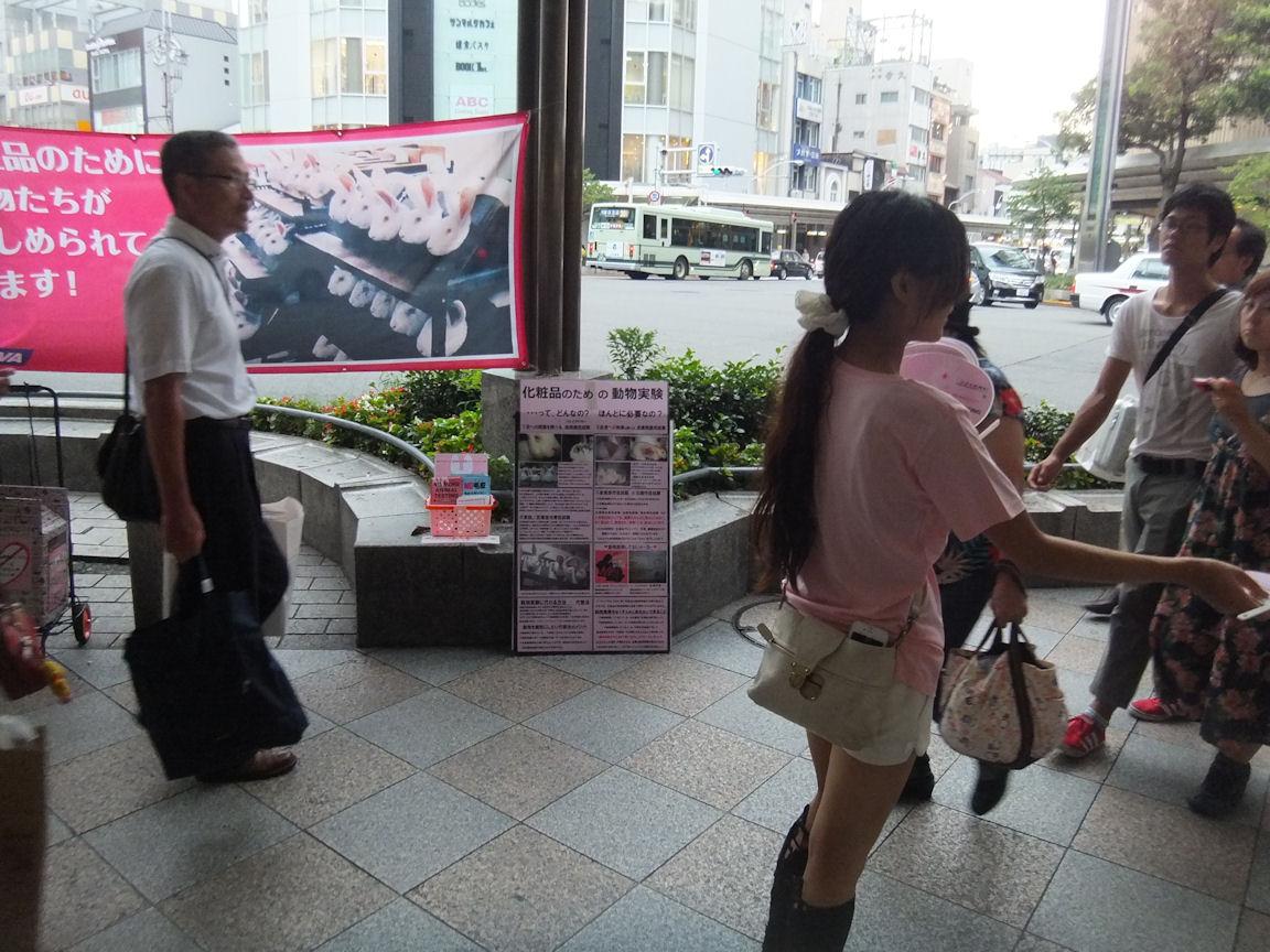 12_20120819015825.jpg