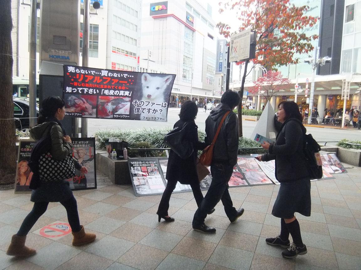 21_20121120212738.jpg