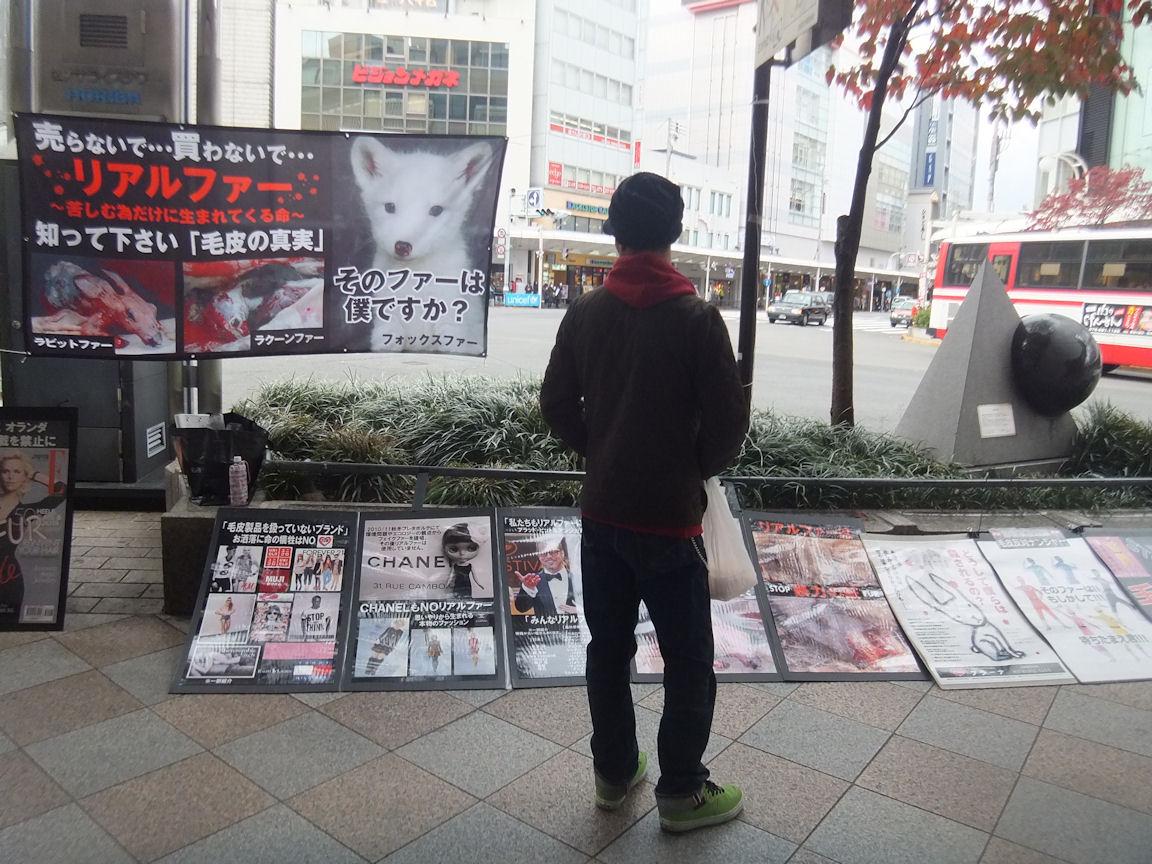 23_20121120212738.jpg
