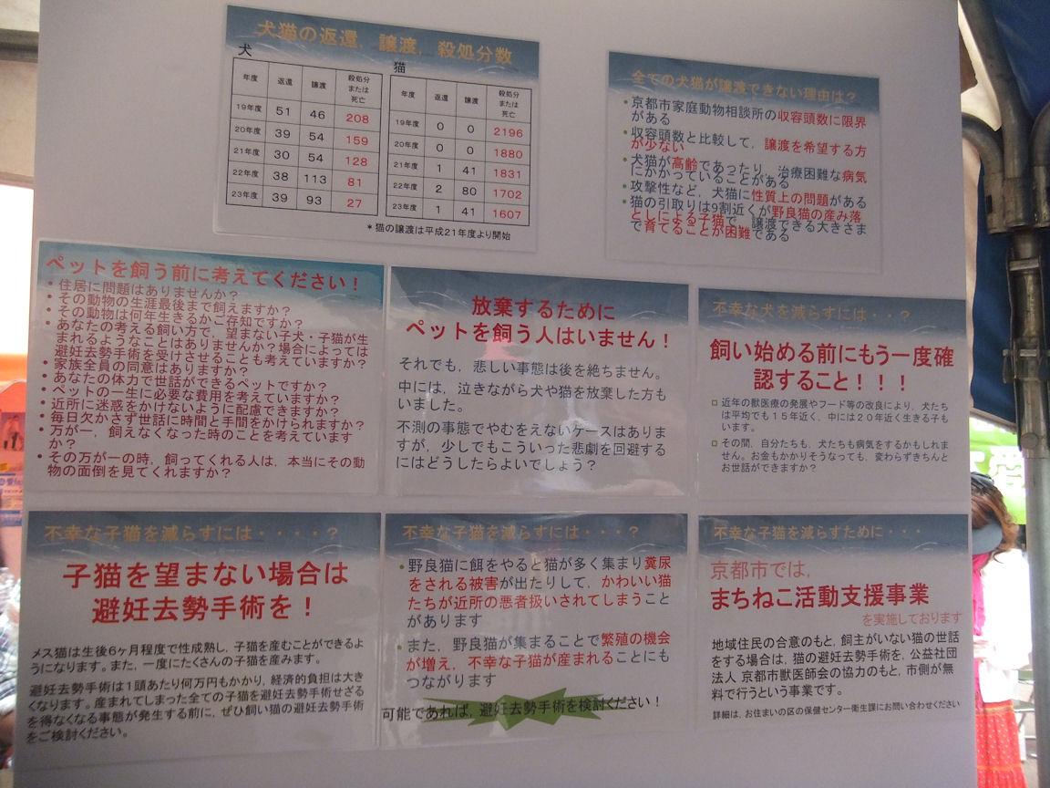 37_20120923213414.jpg