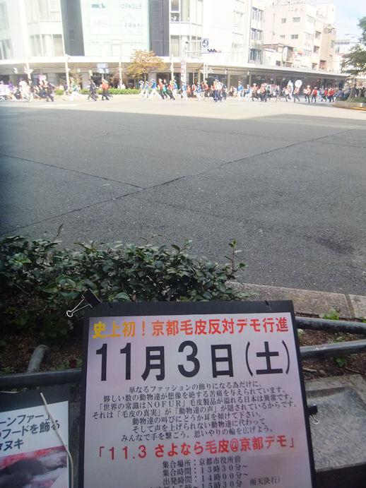 46_20121013232513.jpg