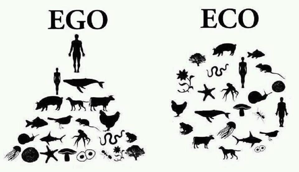 ego_20120721222652.jpg