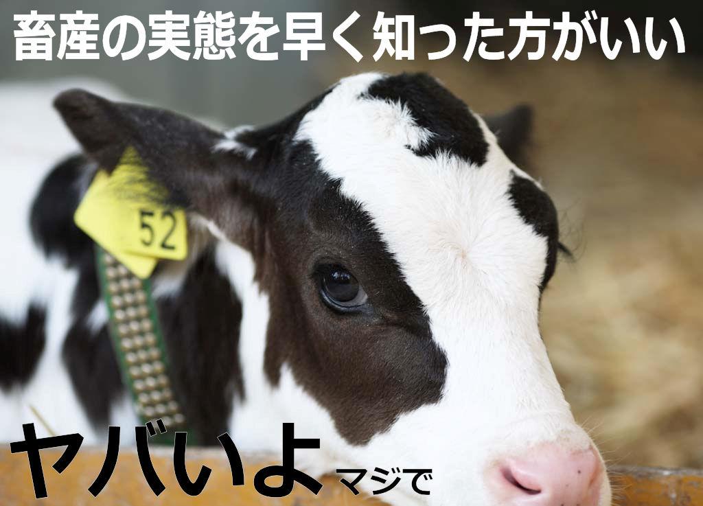 ushi4.jpg